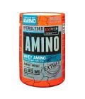 Aminokyseliny Whey Amino Extrifit