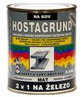 Barva na kov 2v1 na železo Hostagrund