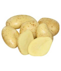 Salátové brambory
