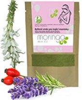 Čaj pro kojící matky Moringa