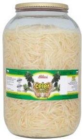 Celer Alibona