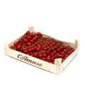 Cherry rajčata L´Amuse