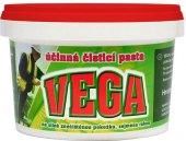 Čistící pasta na ruce Vega