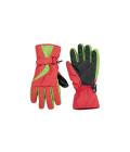 Dámské lyžařské rukavice Crivit
