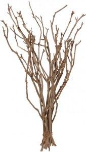 Dekorativní větve