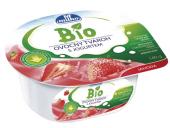 Tvarohový ovocný dezert Bio Milko