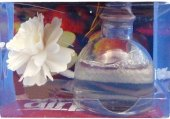 Osvěžovač vzduchu dekorativní Airpure