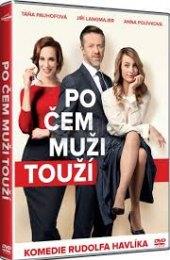 DVD Po čem muži touží