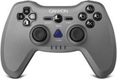 Gamepad Canyon CNS-GPW6