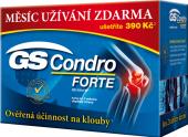 Doplněk stravy Condro Forte GS