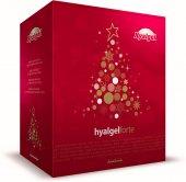 Doplněk stravy sirup Hyalgel Forte - vánoční balení