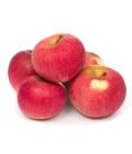 Jablka Albert Bio