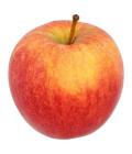 Jablka Gala Sady Vilémov