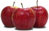 Jablka Jonagored