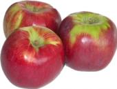 Jablka Ligol