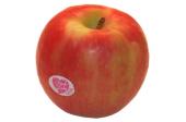 Jablka Pink lady