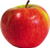 Jablka Šampion