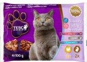 Kapsičky pro kočky Tesco