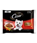 Kapsičky pro psy Cesar