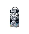 Karaoke dřevěný reproduktor PR-BBQ Proda