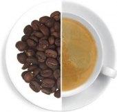 Káva Keňa Kangocho Oxalis