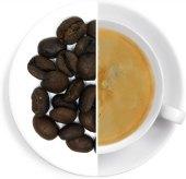 Káva Panama SHB Kotowa Oxalis