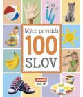 Kniha Mých prvních 100 slov