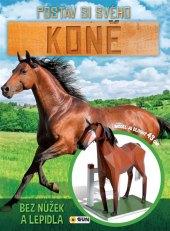 Kniha Postav si svého koně