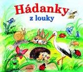 Kniha pro děti Hádanky z louky Junior
