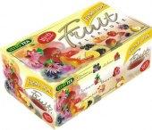 Kolekce ovocných čajů Fruit Vitto Tea