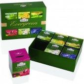 Kolekce zelených čajů Evergreen Ahmad Tea