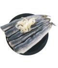 Korunní sardinky