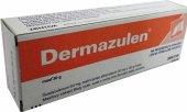 Kožní mast Dermazulen Zentiva