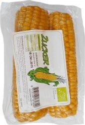 Kukuřice předvařená