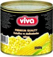 Kukuřice Viva