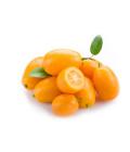 Kumquat Abasto