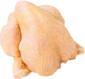 Kuřátko žluté