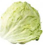 Ledový salát Horeca Select