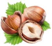 Lískové ořechy ve skořápce