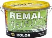 Malířský nátěr Color Remal