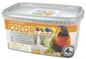 Barevný malířský nátěr Colorline