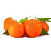 Mandarinky Albert