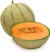 Meloun Cantaloupe Abasto