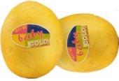 Meloun cukrový Sugar Baby Gold