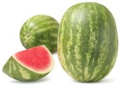 Meloun vodní bezsemenný