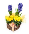 Mix květin