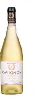 Víno Muscat Cavignon