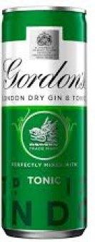 Nápoj míchaný Gin & Tonic Gordon's