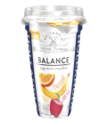 Nápoj Smoothie Balance Hollandia