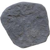 Nášlapný kámen